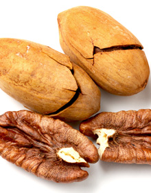 INZ Trading BV - Importer of edible nuts and dried fruit - Located